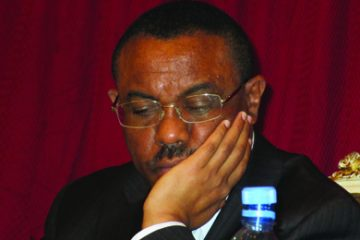 PM Hailemariam may have taken more assignment with him than he came prepared for