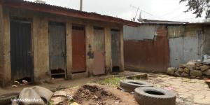 communal toilets.jpg