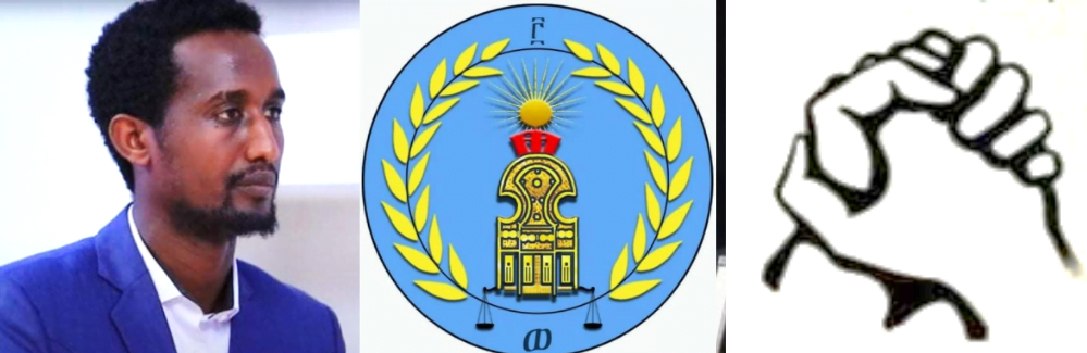 Salsay chair logo and sign Ethiopia: Landslide Win For TPLF, Makes things more complicated.