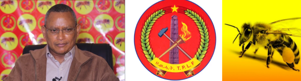 TPLF chair logo and sign Ethiopia: Landslide Win For TPLF, Makes things more complicated.